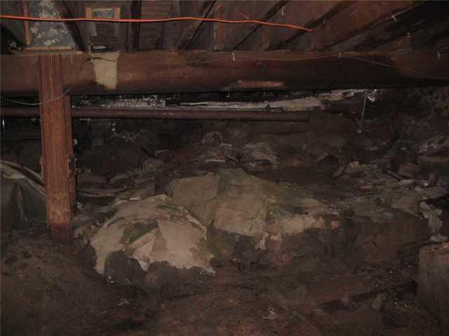 Banishing Mold from Crawl Space in Newaygo, MI