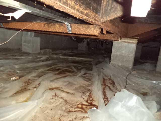 Cheboygan, MI Crawl Space Improved with CleanSpace