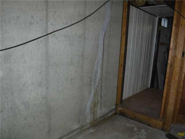 Moist  Walls in Alto, MI Basement
