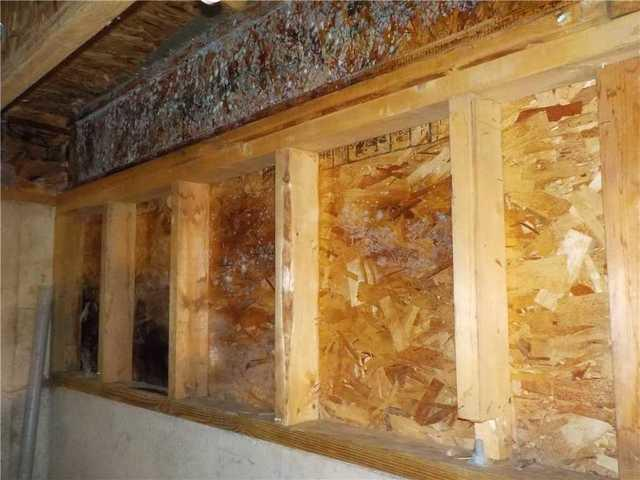 Mold-X Treatment Allows a Kalamazoo, MI Homeowner to Breath Easy Once Again
