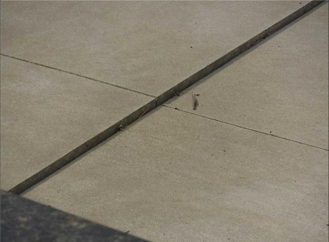 Levelin Concrete in Vicksburg, MI