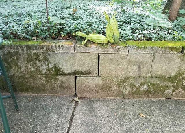 Leveling Concrete in Covert, MI