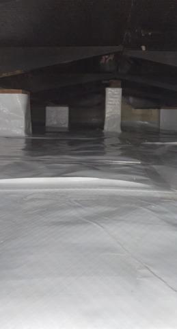 Remedy to a Damp Crawl Space in South Haven, MI