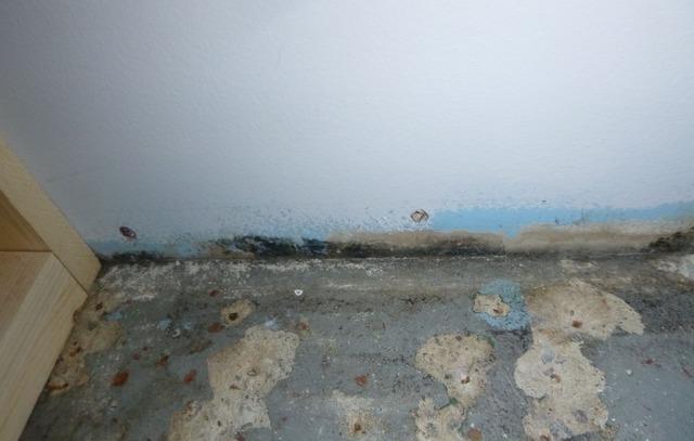Waterproofing a Rockford MI Home