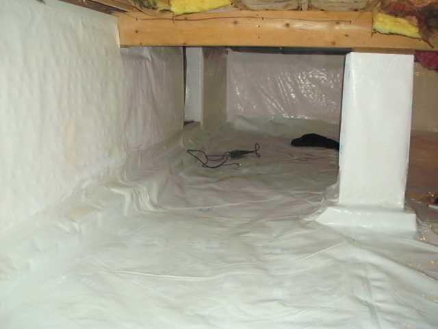 Crawl Space makeover in East Lansing, MI