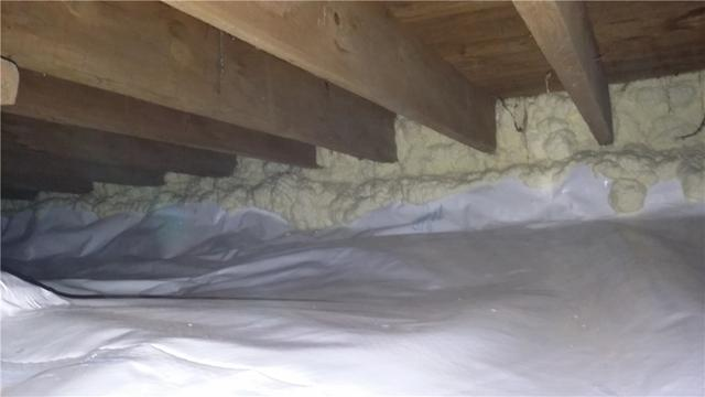 CleanSpace Rids Traverse City, MI Crawl Space of Spiders