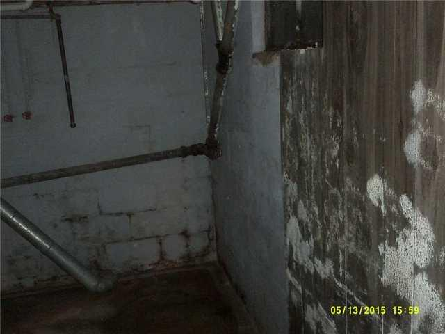 WaterGuard Solves Hastings, MI Basement Mold Problem