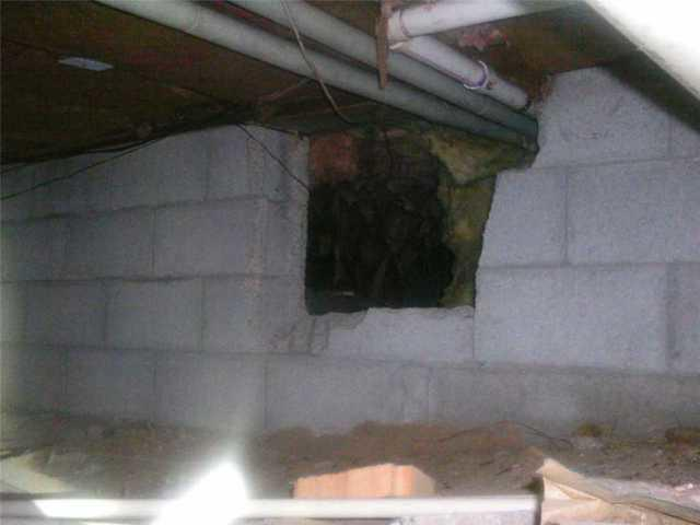 CleanSpace Crawl Space Encapsulation in Spring Lake, MI