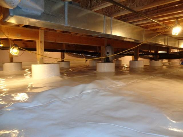 Mold Remediation & Encapsulation in Carbondale, CO