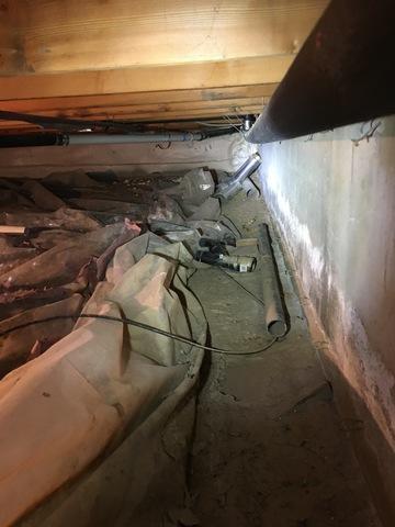 Crawlspace Mystery Odor in Buena Vista, CO