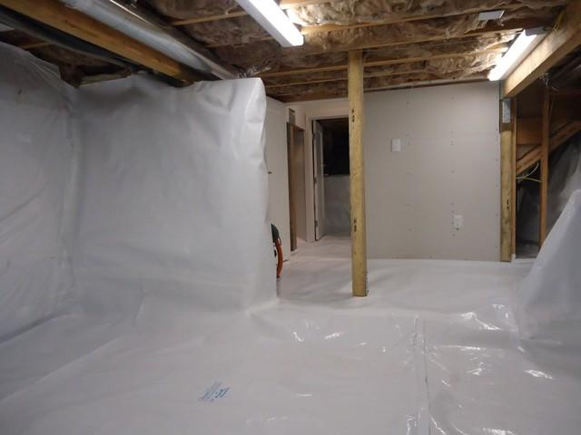 Basement Waterproofing in Red Cliff, CO