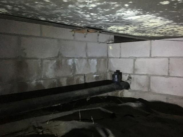 Modular Home Crawlspace Fix in Eagle, CO