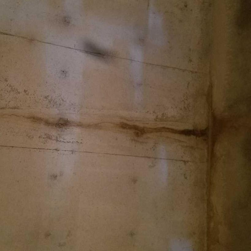 Water Control in Forestville, WI - Before Photo