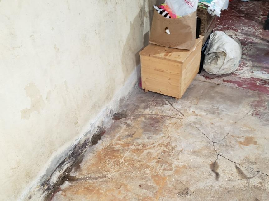 Water Control and Wall Stabilization in Cedar Grove, WI - Before Photo