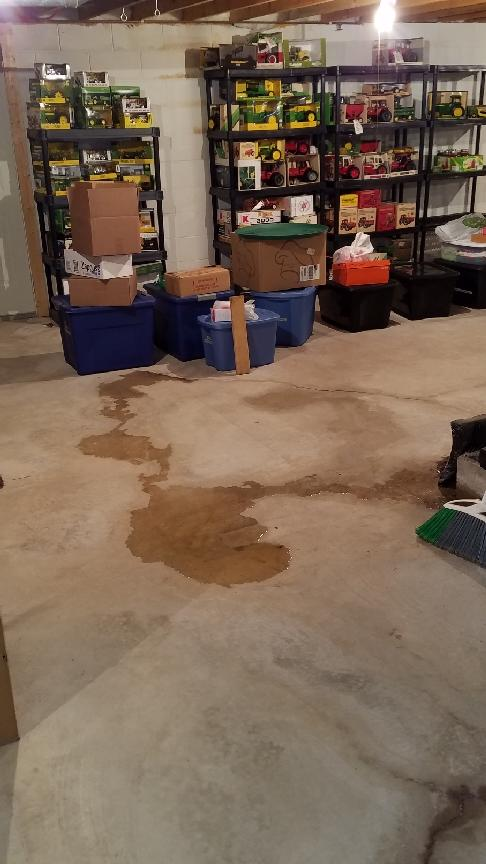 Protecting Against Water with the TripleSafe Sump Pump in Whitelaw, WI - Before Photo