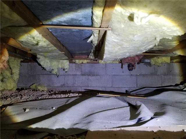 Removing Odor in Crawlspace in Menasha, WI