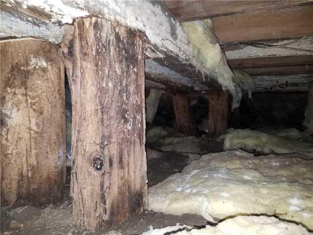 Supporting an Old Crawlspace with CleanSpace and SmartJacks in New London, WI