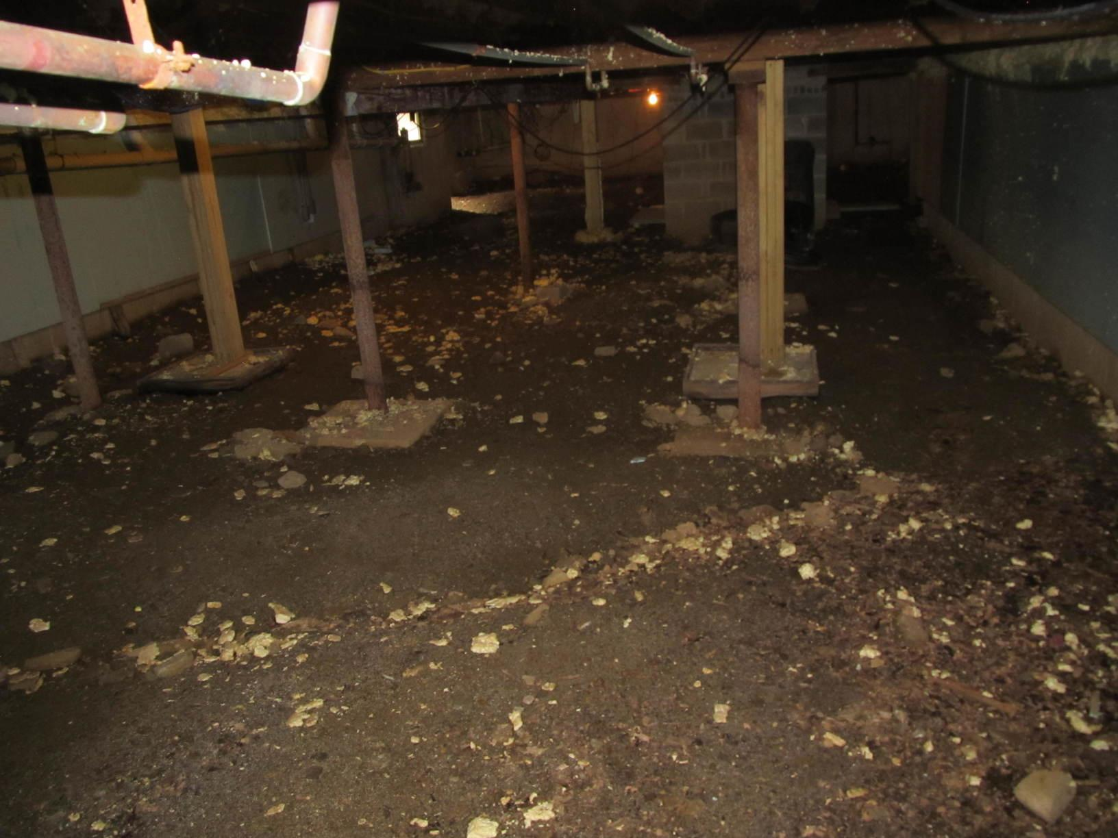 Wet Basement with Unstable Foundation in North Hampton, NH - Before Photo