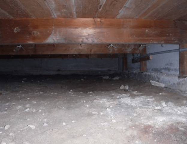 Crawl space encapsulation in Issaquah, WA - Before Photo