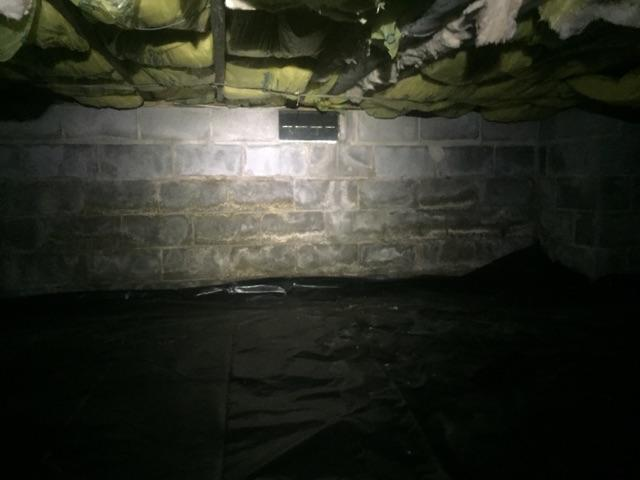 Spray Foam & Vapor Barrier - Richmond Crawl Space Encapsulation - Before Photo