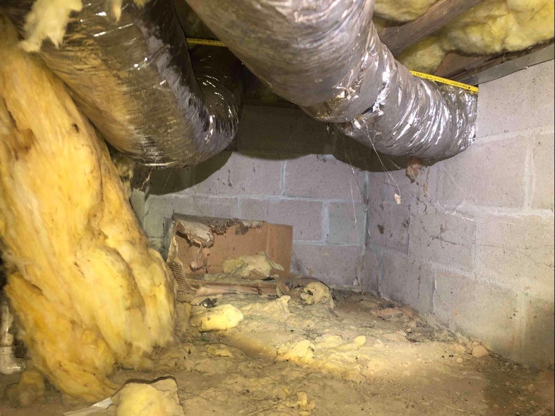 Crawl Space Encapsulation in Bruington, VA - Before Photo