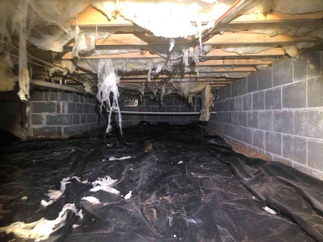 Mold in New Kent, VA Crawl Space