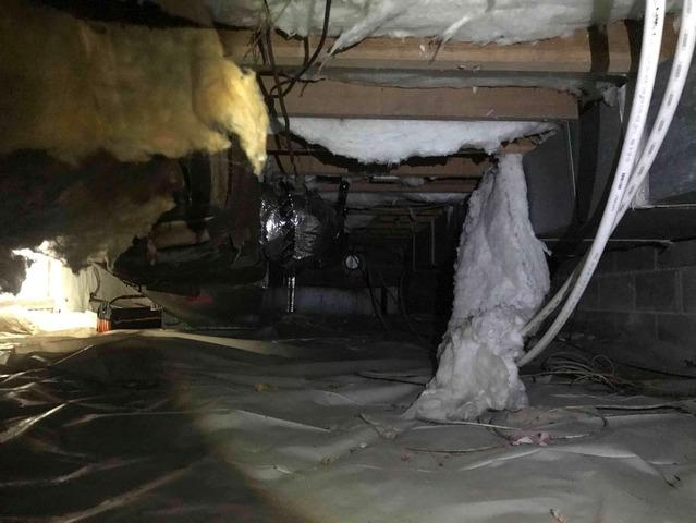 Insulating a North Chesterfield, VA Crawl Space - Before Photo