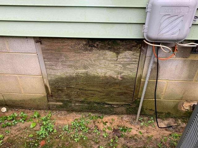 Crawl Space Door Replacement in South Chesterfield, VA