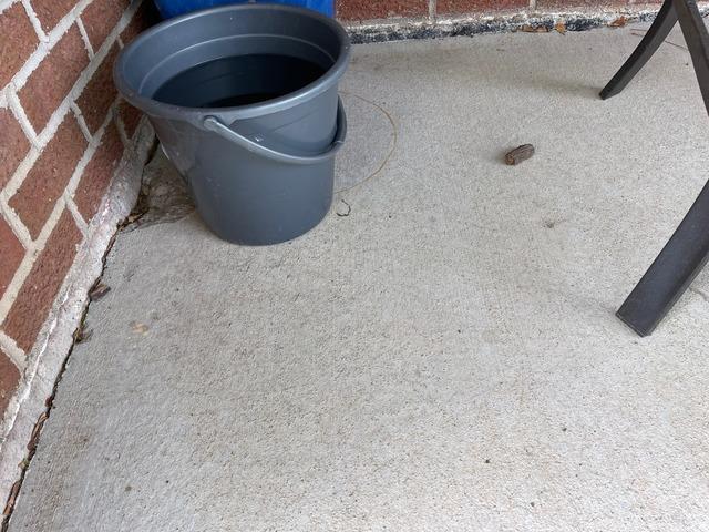 Concrete Driveway Repair in Salina, KS