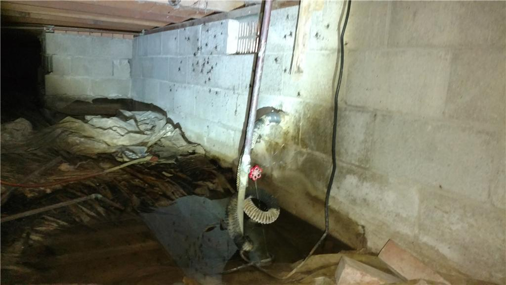 TripleSafe Sump Pump Installation with Crawl Space Encapsulation in Danville, Illinois - Before Photo