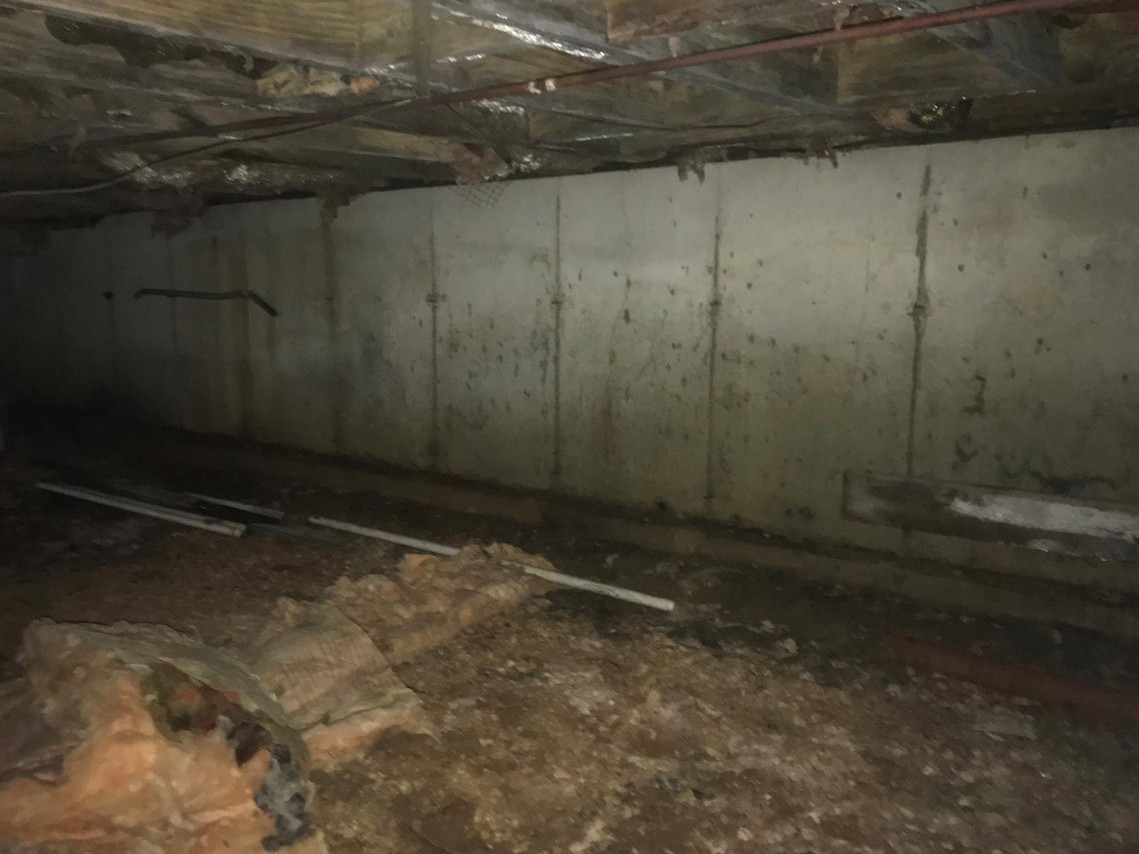 Sealing a Crawl Space and - Before Photo