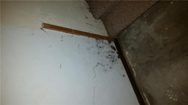 Waterproofing in East Alton, IL