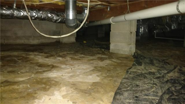 CleanSpace Crawlspace Encapsulation in Champaign, Illinois