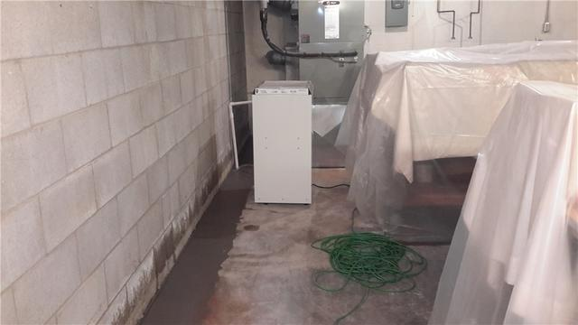SaniDry Prevents Mold in Carbondale, Illinois Basement