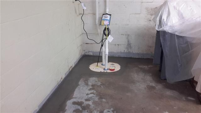 TwinPack Sump Pump System in Carbondale, Illinois