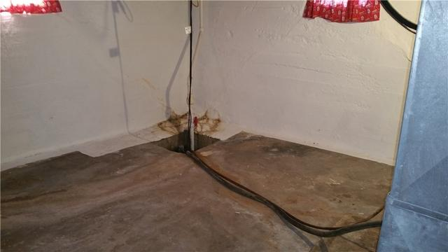 CleanSpace Installation in Dorsey, Illinois Basement