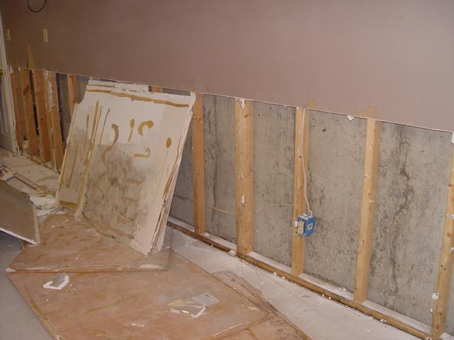 Moldy Basement Drywall in Maryland Heights, MO