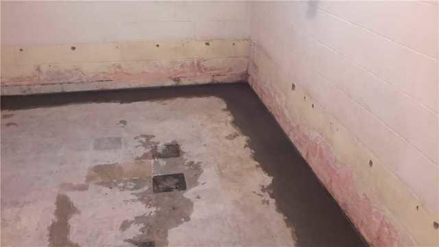 WaterGuard Protects Jacksonville, IL Basement from Water Leaks