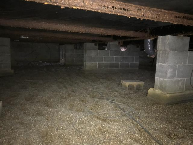 Uncovered, Musty Basement Restored with CleanSpace System in Edinburg, IL