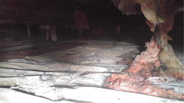 Insulation Falling, Messy Crawl Space Cleaned with CleanSpace in Du Bois, IL