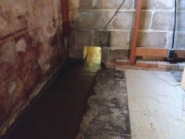Hillsboro, IL Leaks Stopped with WaterGuard Drains