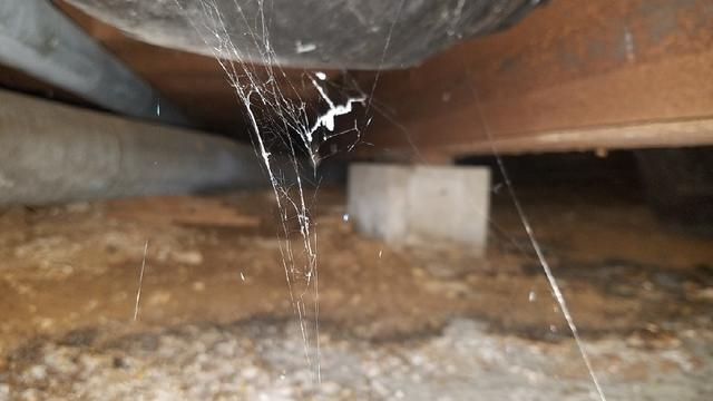 Dirty Byrnes Mill, Missouri Crawl Space Updated with CleanSpace