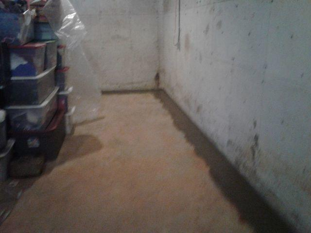 Water Damaged Decatur, IL Basement Restored with WaterGuard