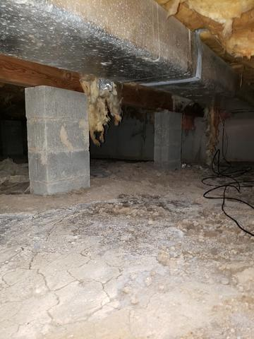 CleanSpace Takes A Wet Crawl Space into Fresh & Clean in Bowling Green, MO