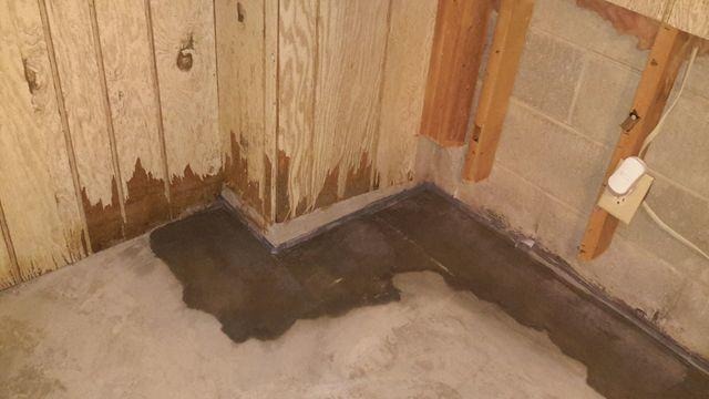 Reactive Waterproofing Project with TripleSafe & WaterGuard in Georgetown, IL - After Photo