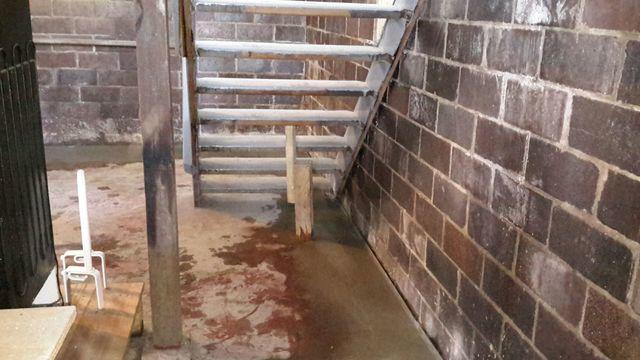 Susceptible, Wet Basement Protected with WaterGuard Drains in Belleville, IL