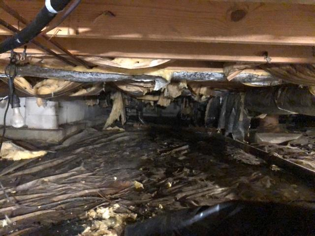 Cleaning Up a Crawlspace with CleanSpace™