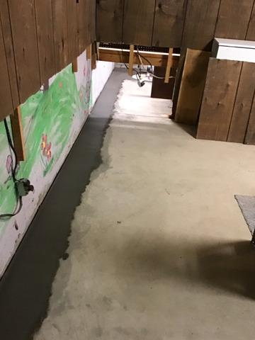 Basement Dry with WaterGuard Meredosia, Illinois