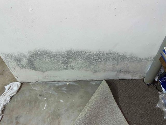Waterproofing Auxvasse, Missouri Basement