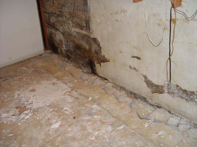 Restoring a Belleville, IL Basement - Before Photo